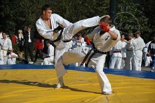 Сегодня стартуют сборы по киокушинкай карате