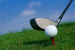 Кубок Украины по мини-гольфу (Фото)
