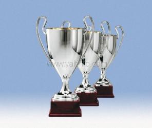 Названы лучшие спортсмены Ялты в 2012 году