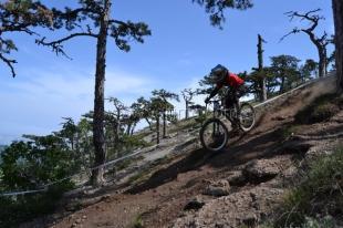 Велогонка «FreeRate DH» в Ялте получила подтверждение Международного союза велосипедистов