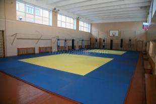 Ялтинским самбистам пообещали спортзал