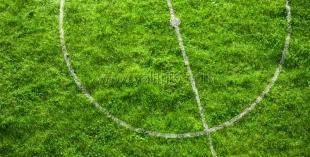 В Ялте появится спорткомплекс с двумя футбольными полями