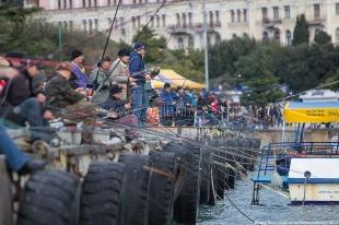 Ялтинский браконьер  наловил кефали на пять тысяч гривен