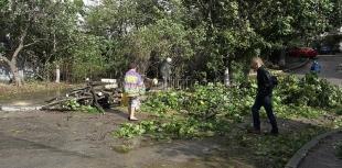 Ялта справляется с последствиями сильного урагана