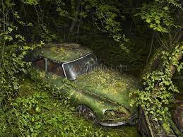 В Ялте объявили охоту на бесхозные автомобили