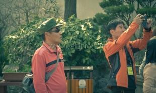 Весной в Крым позвали группу тайваньских туристов