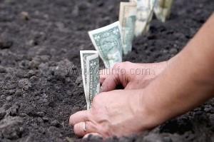 В Ялте собрали более 400 млн руб платы за землю