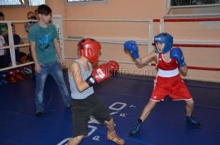 В Ялте померялись мастерством клубы по боксу и кикбоксингу