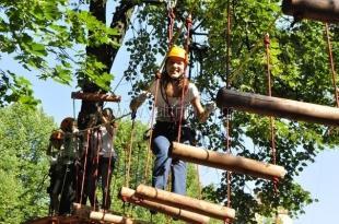 В «Артеке» хотят построить самый большой в России веревочный парк