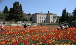 10 апреля в Ялте откроется «Парад тюльпанов»