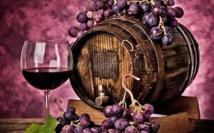 В институте «Магарач» открылся юбилейный Международный конкурс винодельческой продукции «Ялта. Золотой грифон — 2015»