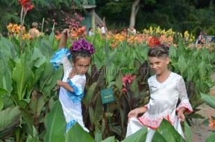 В Никитском саду прошла 51-я выставка канн