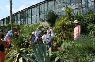 Малыши из Санкт-Петербурга подарили Никитскому саду песню «Защитники природы» и высадили агаву
