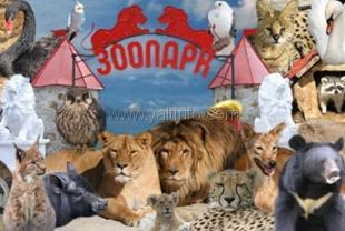 Ялтинский зоопарк «Сказка» сегодня отмечает 20-летие