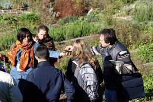 В Никитском ботаническом саду открылся первый Международный арома-фестиваль