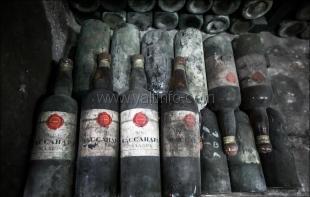 «Массандра» провела экспертную дегустацию коллекционных вин для определения их ценности