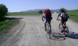 Крым планируют сделать меккой велосипедного спорта