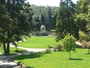 Никитскому саду выделили 20 миллионов