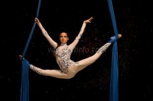 В августе пройдет  Международный конкурс «Master – show 2012»