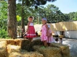 В Гаспре открылась «Маленькая ферма»