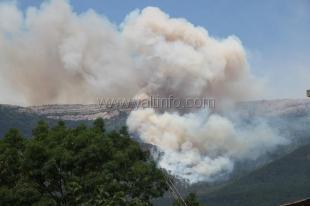 Над Ялтой снова горит лес